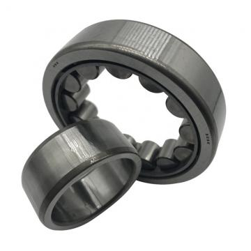 AMI UCEP207-20  Pillow Block Bearings